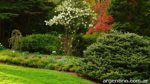 Mantenimiento de parques y jardines podas corte rboles for Mantenimiento de parques y jardines